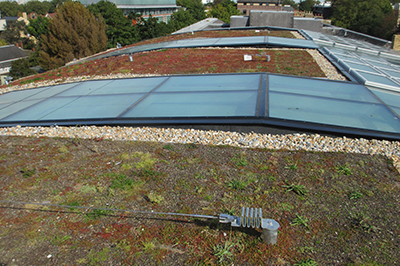 Fall arrest systems for green roofs